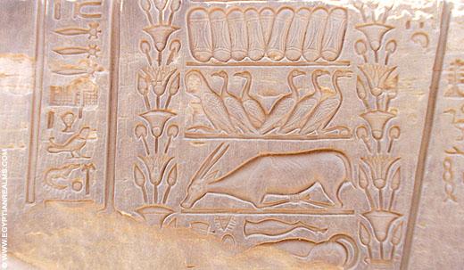 Relief op een muur van de Kom-Ombo Tempel.