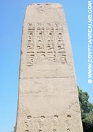 Deel van een Obelisk bij Memphis.
