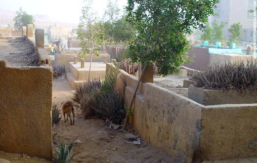 Oude begraafplaats bij Giza.