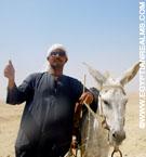 Egyptenaar bij Saqqara.