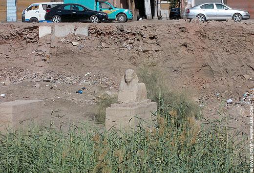 Sphinx beeld van de Luxor Tempel in Egypte.