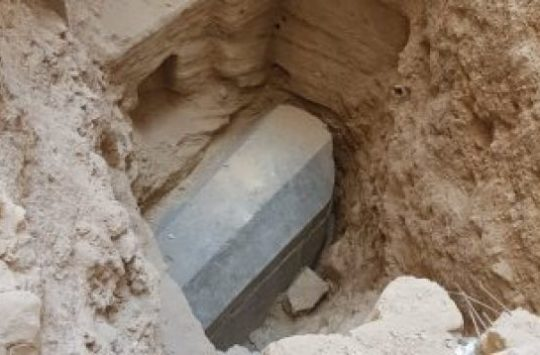Black sarcophagus found at Alexandria.