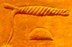Ancient Egyptian hieroglyph rope