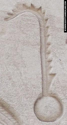 Ancient Egyptian hieroglyph plant