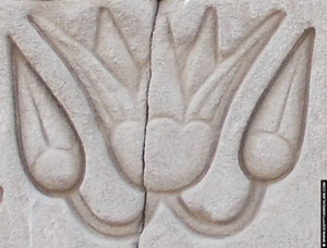 Egyotian hieroglyph of the Lotus