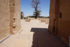 hibis tempel03