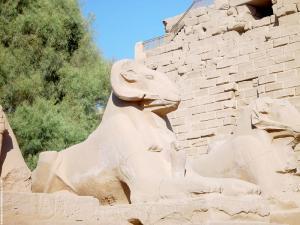 Beeld van de Ram Amun