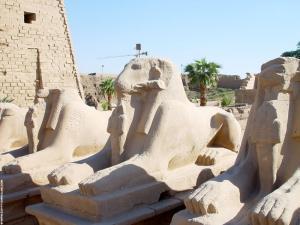 Tussen de poten staat Pharaoh