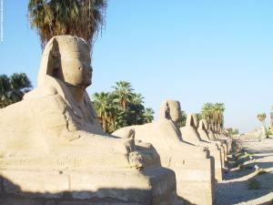 Sphinx beelden langs de weg