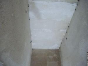 Vleermuizen in de grafkamer